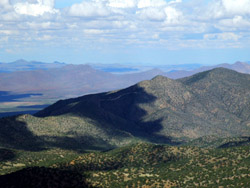 Chiricahua Mountains © 2006  F. S. Simpson