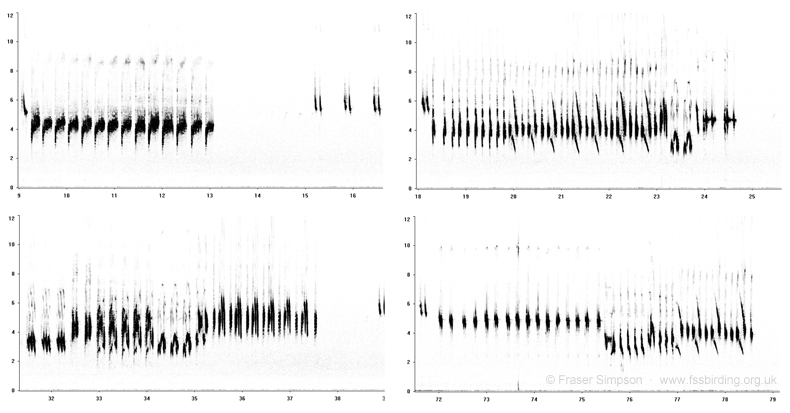 Sonograms of Bluethroat repertoire
