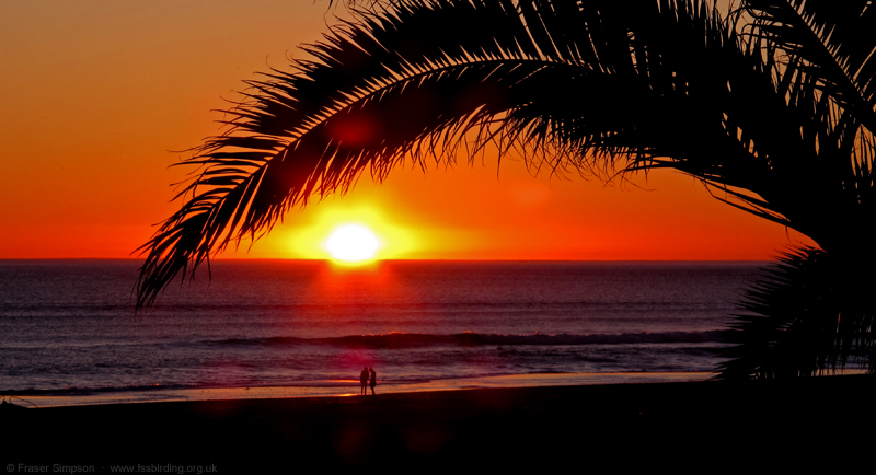 Playa de Zahara sunset © Fraser Simpson