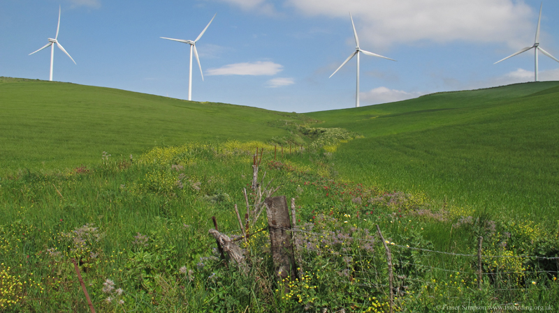 Wind turbines and flower-rich ditch, La Zarzuela © Fraser Simpson