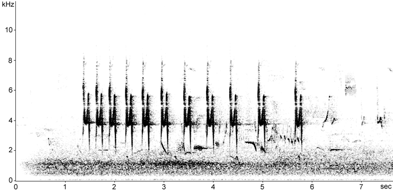 Sonogram of Cetti's Warbler call