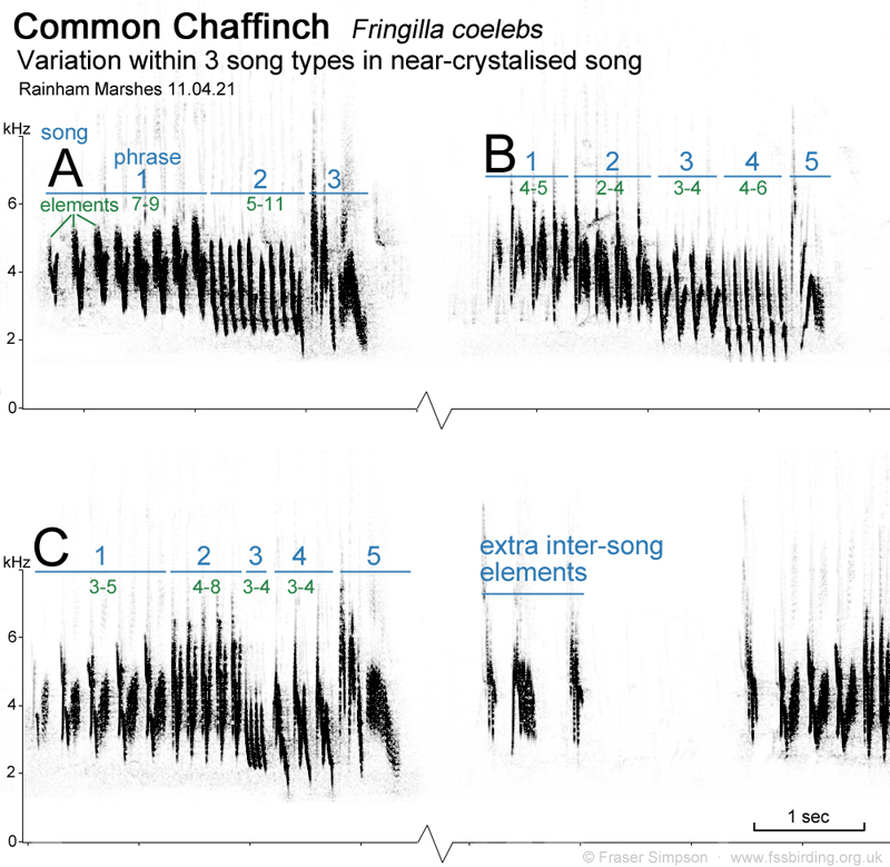 Sonogram of Chaffinch with three song types