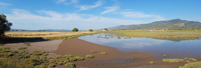 Saltmarsh near Christou River mouth © Fraser Simpson  ·  www.fssbirding.org.uk