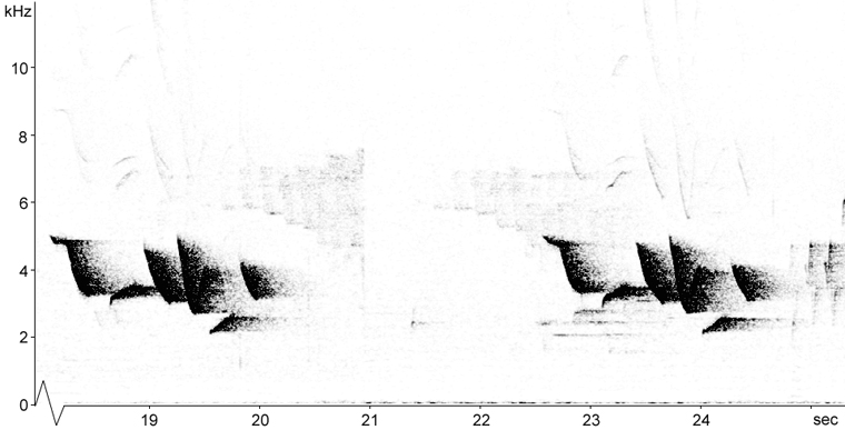 Sonogram of Fox Sparrow song