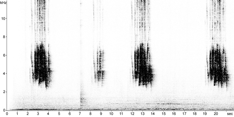 Sonogram of House Bunting song