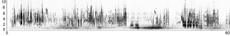 Sonogram of Icterine Warbler song