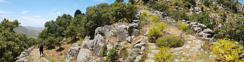 Rocky oak slopes around Ipsilou Monastery © Fraser Simpson  ·  www.fssbirding.org.uk