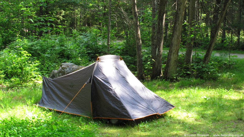 Webb Lake Campground, Mount Blue State Park � Fraser Simpson  �  www.fssbirding.org.uk