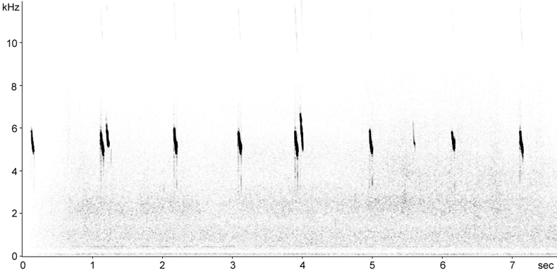 Sonogram of Red-throated Pipit alarm calls