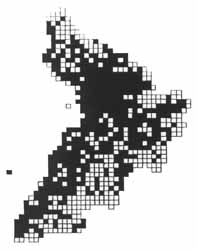 Small Tortoiseshell distribution in Ayrshire