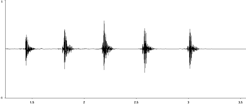 Oscillogram of Southern Oak Bush-cricket drumming (sonation)