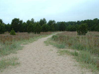 Holick Dune & Heathland