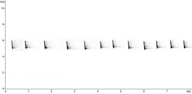 Sonogram of Woodlark call