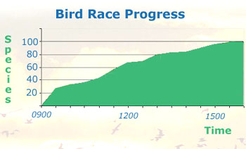 Bird Race Progress Chart
