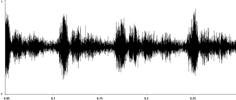 Oscillogram of Bow-winged Grasshopper stridulation
