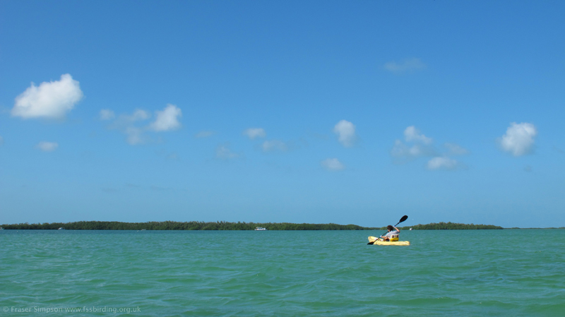 On the way to Lower Sugarloaf Key © Fraser Simpson  2014