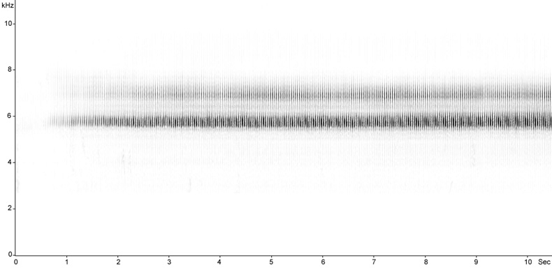 Sonogram of Grasshopper Warbler song